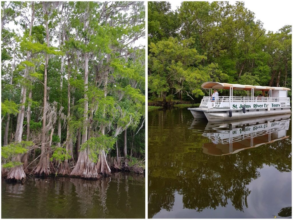 River cruise St. Johns River