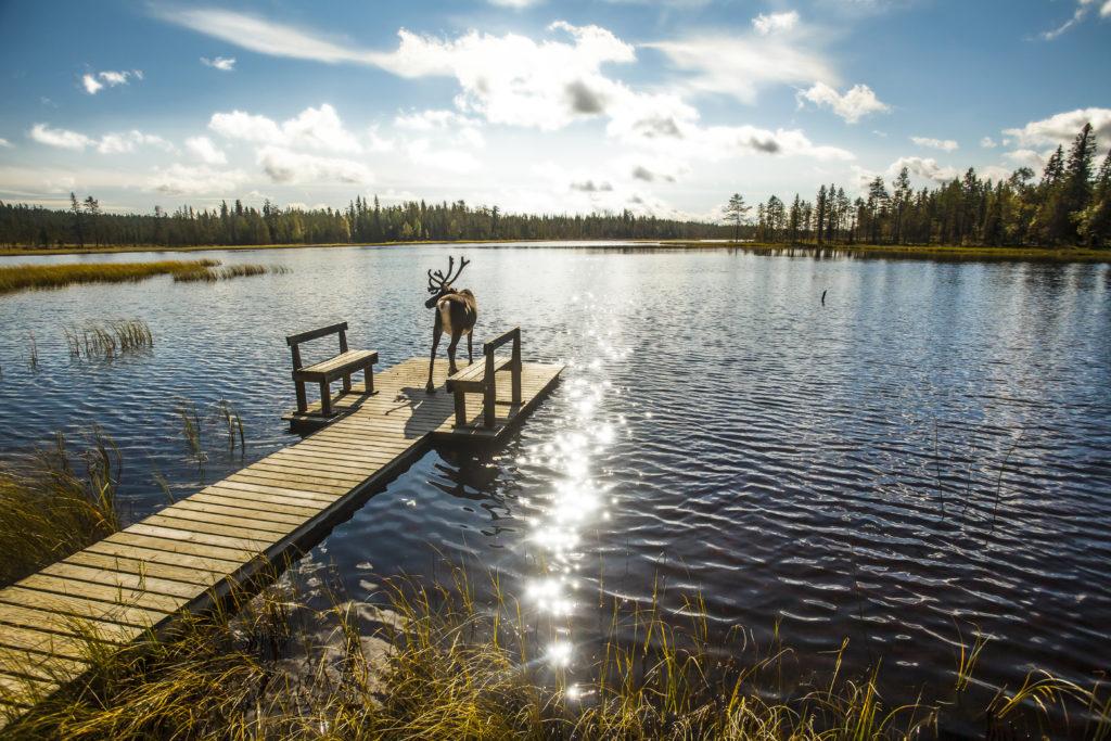 meren van finland