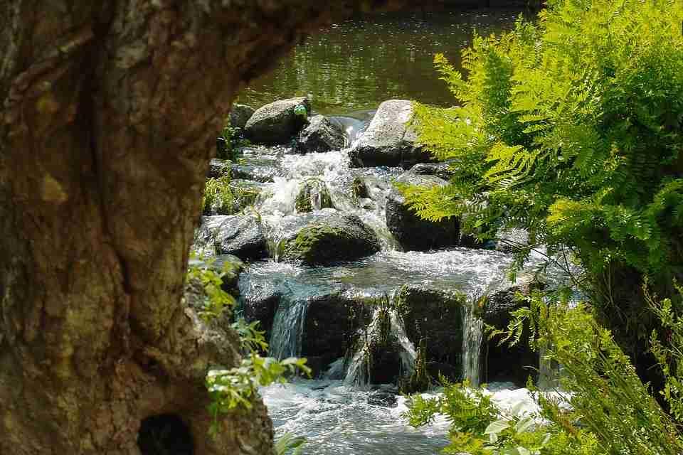 Bretagne natuur
